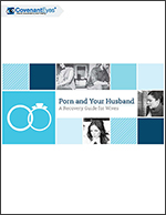 Porn and Your Husband Ebook Cover