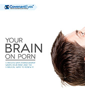 Your Brain on Porn Ebook Cover