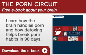 The Porn Circuit
