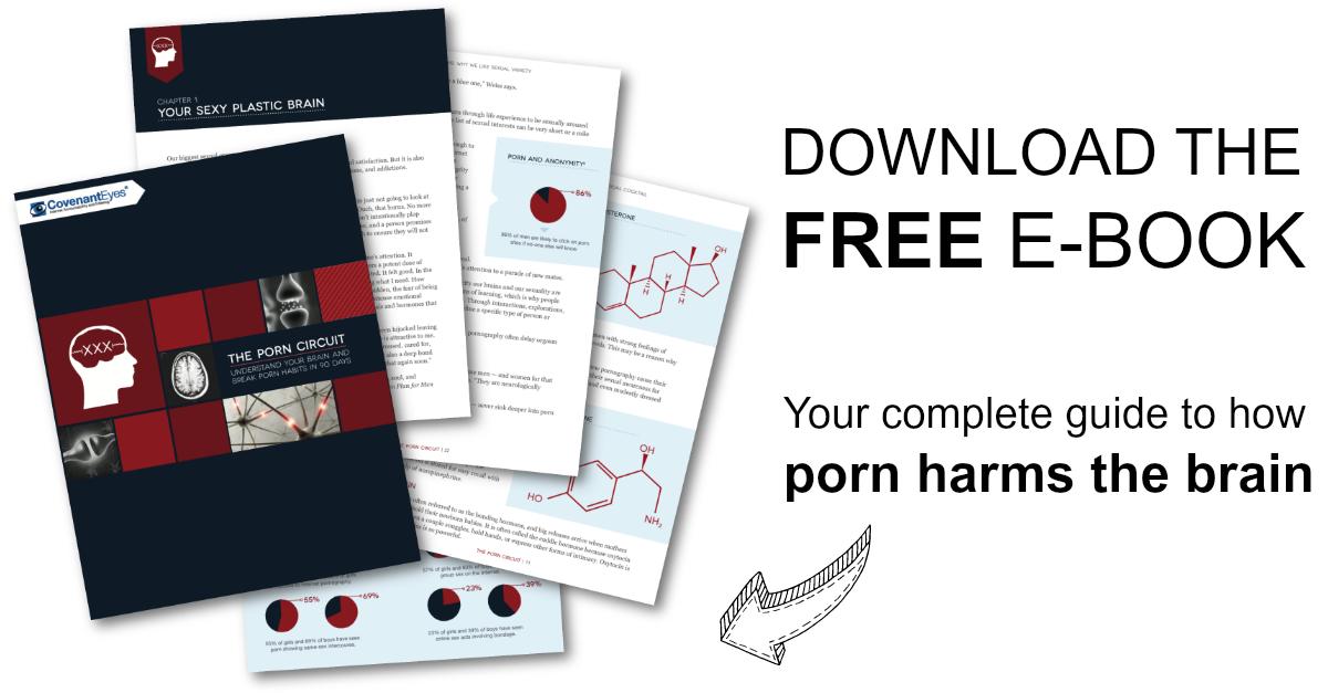 The Porn Circuit ebook