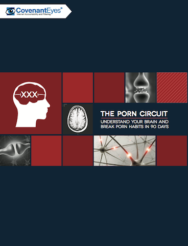 biblical neurology - porn circuit