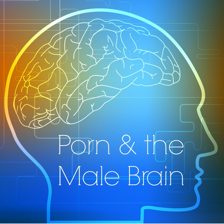 Porn and the Male Brain