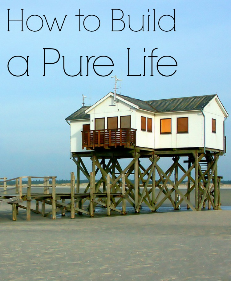 How to Build a Pure Life