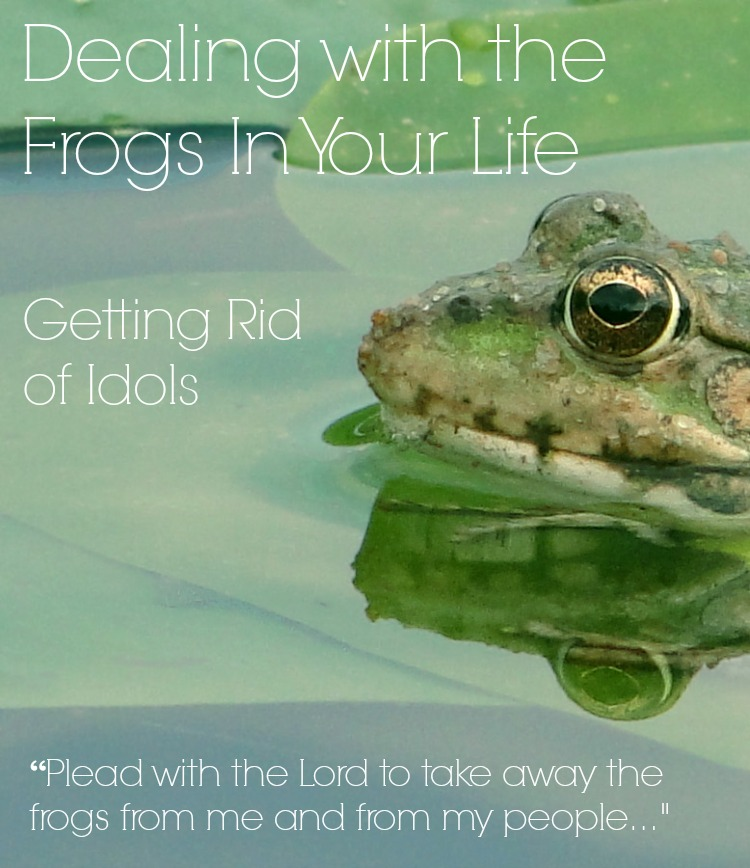 Dealing with the frogs in your life