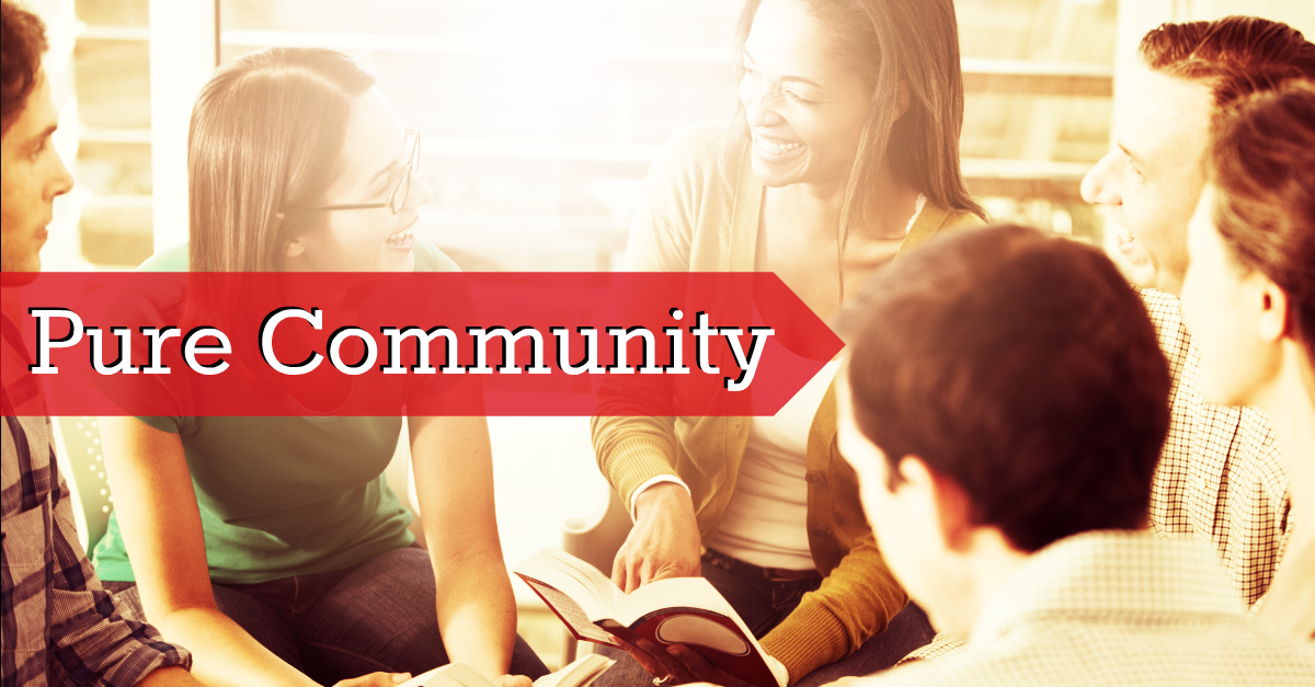 Pure Community - Online Directory