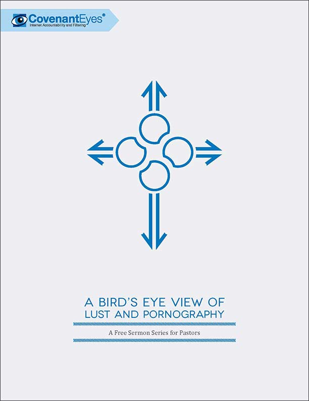A Bird's Eye View of Lust and Pornography