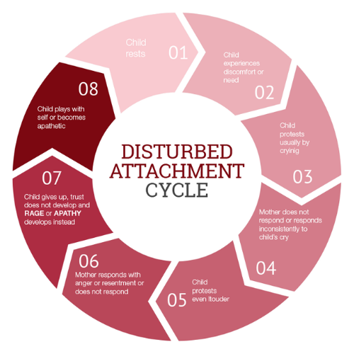 disturbed attachment cycle diagram
